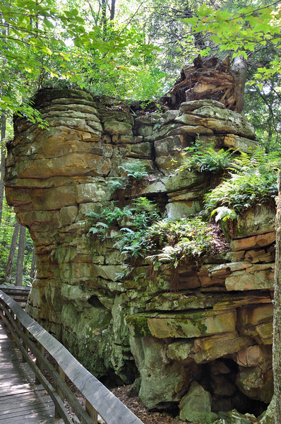 """Beartown State Park<br />  <a href=""""http://www.beartownstatepark.com/"""">http://www.beartownstatepark.com/</a><br /> Beartown is noted for its unusual rock formations, which are comprised of Droop, or Pottsville, Sandstone formed during the Pennsylvanian age. Massive boulders, overhanging cliffs, and deep crevasses stir the imagination of most visitors. Pocketing the face of the cliffs are hundreds of eroded pits, ranging from the size of marbles to others large enough to hold two grown men. Ice and snow commonly remain in the deeper crevasses until mid to late summer. Vegetation clings tenaciously to life, sending roots into mere cracks in the rocks."""