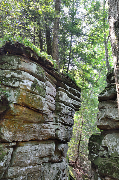 "Beartown State Park<br />  <a href=""http://www.beartownstatepark.com/"">http://www.beartownstatepark.com/</a><br /> Beartown is noted for its unusual rock formations, which are comprised of Droop, or Pottsville, Sandstone formed during the Pennsylvanian age. Massive boulders, overhanging cliffs, and deep crevasses stir the imagination of most visitors. Pocketing the face of the cliffs are hundreds of eroded pits, ranging from the size of marbles to others large enough to hold two grown men. Ice and snow commonly remain in the deeper crevasses until mid to late summer. Vegetation clings tenaciously to life, sending roots into mere cracks in the rocks."