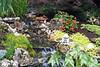 2007_garden_walk (1)