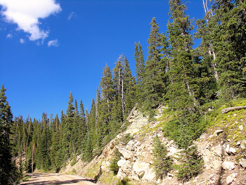 2006_8_Rocky_Mountain_National_Park (47)
