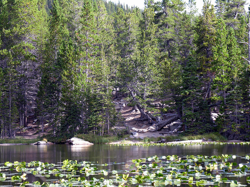 2006_8_Rocky_Mountain_National_Park (95)