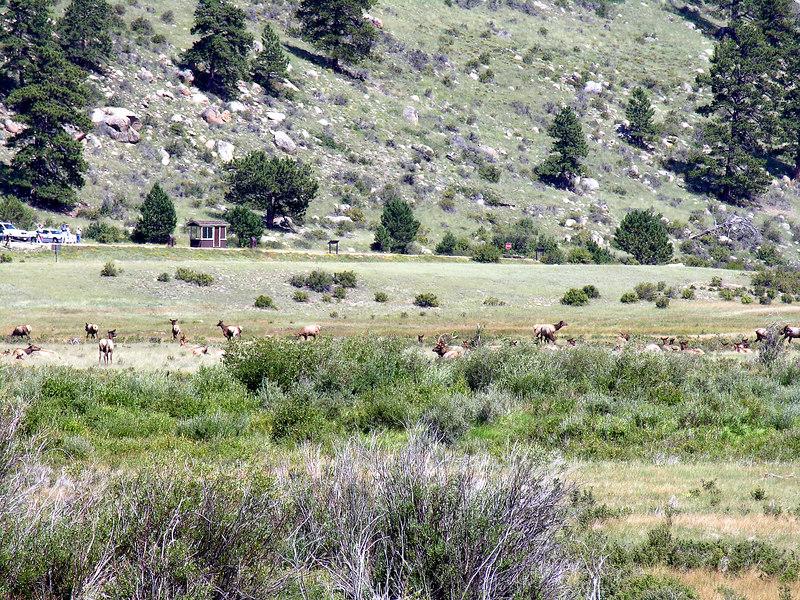 2006_8_Rocky_Mountain_National_Park (18)