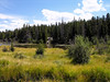 2006_8_Rocky_Mountain_National_Park (145)