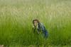 Hiding_Darla