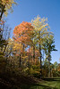 2007_Fall (108)