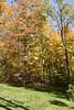 2007_Fall (79)