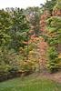 2007_Fall (45)