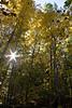 2007_Fall (106)
