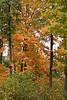 2007_Fall (39)