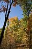 2007_Fall (94)
