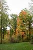 2007_Fall (51)