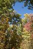 2007_Fall (69)