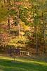 2007_Fall (104)