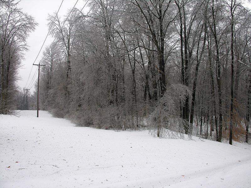 2007_2_13 Ice Storm (12)