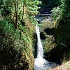 <b>Middle Oneonta Falls </b><br>Columbia Gorge <br>8-14-10