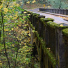 <b>Bridge, Columbia River Historic Highway</b><br>Columbia Gorge