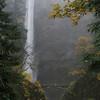 <b>Multnomah Falls in the fog </b><br>Columbia Gorge