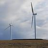 <b>Wind Turbines </b><br><i>2.1 MW wind turbines at Rattlesnake Road Wind Farm, Arlington, Oregon</i><br> Note: rotor diameter is 88m (288 ft)