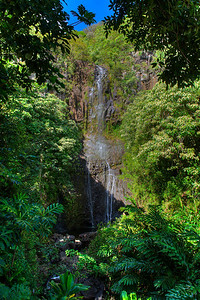 "Waterfall on the Road to Hana - Road's much improved over the years. Couldn't find a single T-Shirt sporting ""I Survived the Road to Hana."""