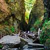 Climbing over a log jam to get into Oneonta Gorge