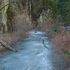 Iced-over creek at Multnomah Falls