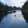 <b>Fishing </b><br><i>Clackamas River</i>