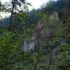 <b>Cliff </b><br>Tanner Creek Trail near Wahclella Falls </b><br>Columbia River Gorge <br><i>October 12, 2008</i>