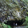 <b>Wahclella Falls </b><br>Columbia River Gorge <br><i>October 12, 2008</i>