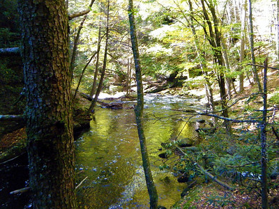 Big Bushkill Creek