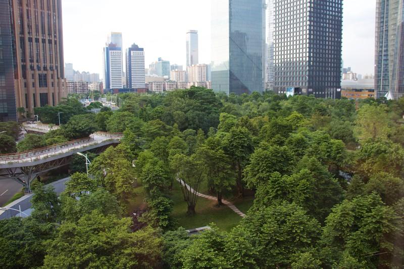 Out the Window Guangzhou