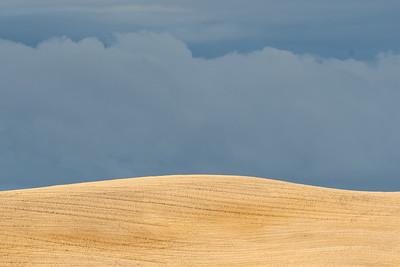 Palouse Harvest