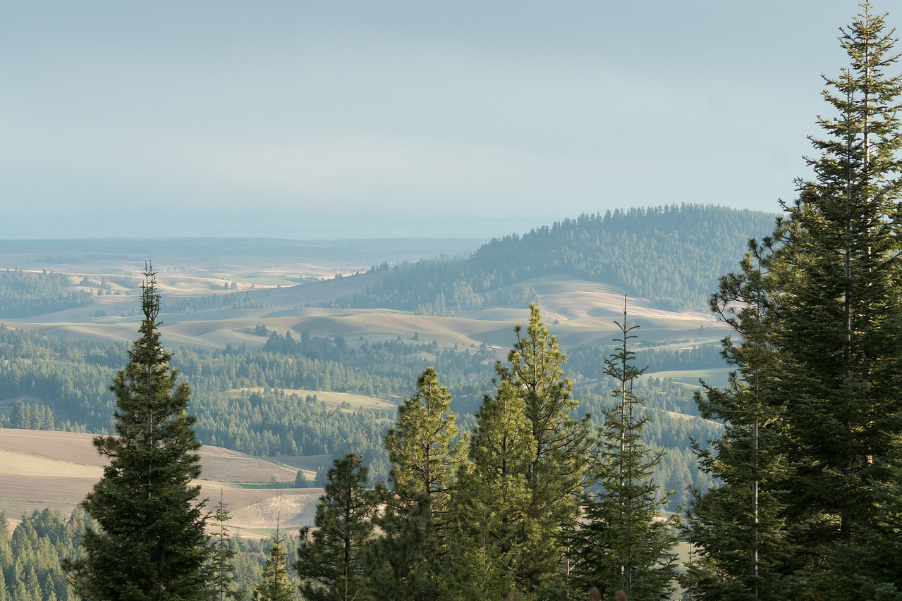 View from Moscow Mountain