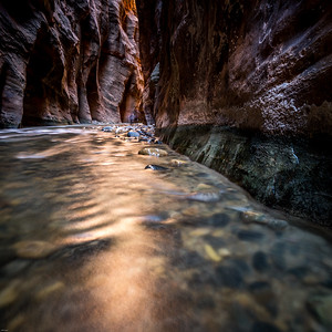 Narrows of the Virgin River, Zion NP