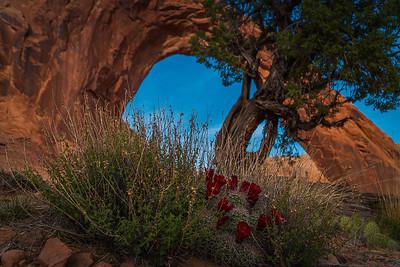 Corona Arch, Utah