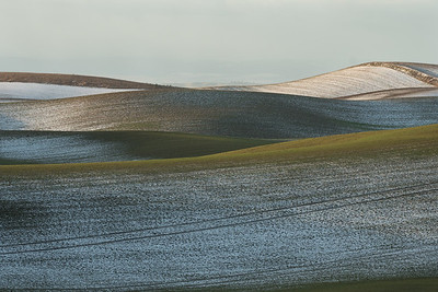 Palouse Dusting