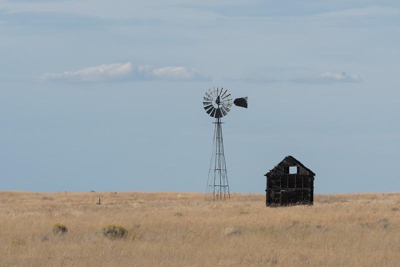 Oregon Grasslands