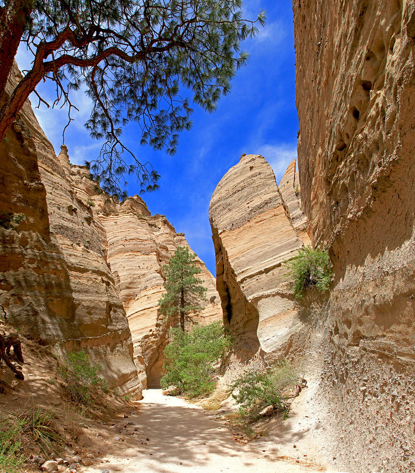 Formations at Tent Rocks National Monument. Near Santa Fe, NM.