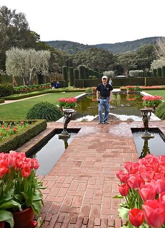 Filoli Gardens-3/10/17