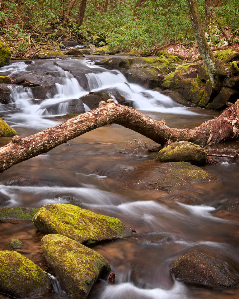 Stanley Creek, Cherry Log GA