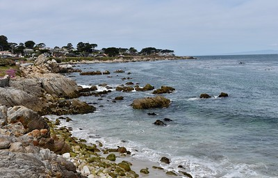Lover's Point & Pt Lobos-4/18/18