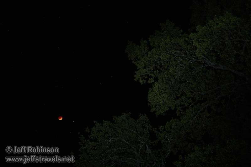 "The moon in total eclipse with a star to its right, and Mars above and farther to the right. Oak trees with some ""light painting"" are in the foreground  (4/15/2014)<br /> EF24-105mm f/4L IS USM @ 55mm f5.6 8s ISO320"