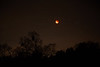 Lunar Eclipse during a super moon (and blue moon) (1/31/2018, my field)<br /> EF24-105mm f/4L IS USM @ 93mm f4 6s ISO1000