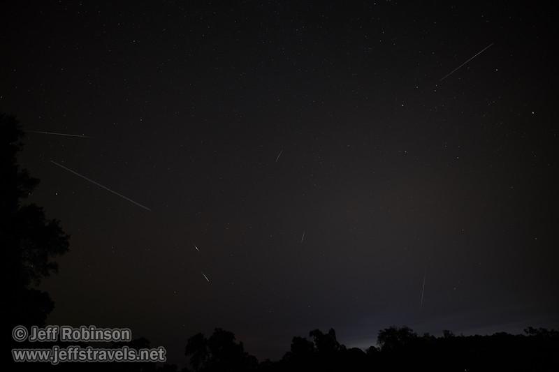 Composite photo of meteor trails (8/14/2018, Perseid Meteor Shower, my field)<br /> 20mm F1.4 DG HSM   Art 015 @ 20mm f1.6 20s ISO400