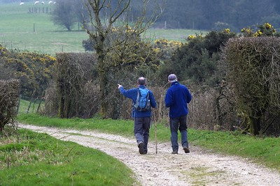 On Track - Walbury Hill nr Combe