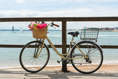 Portsmouth CIty Discovery Bike with Flowers