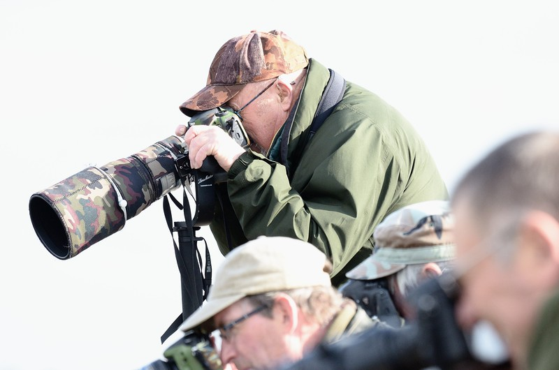 Photographers getting the shot of the Grey Phalarope at Farmoor 23rd October 2016