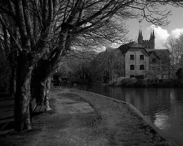 Treeside Canal
