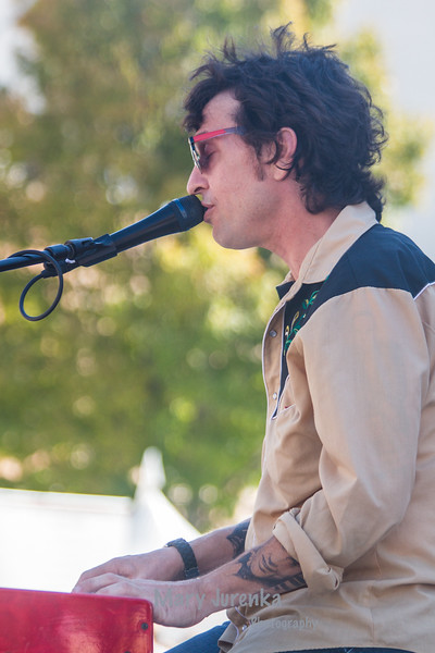 David Zollo at the World Food and Music Festival