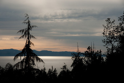 Somewhere on the coast road going to Port Renfrew.