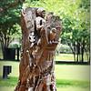 2014-06-16_IMG_1990_Largo Central Park,Largo,Fl _